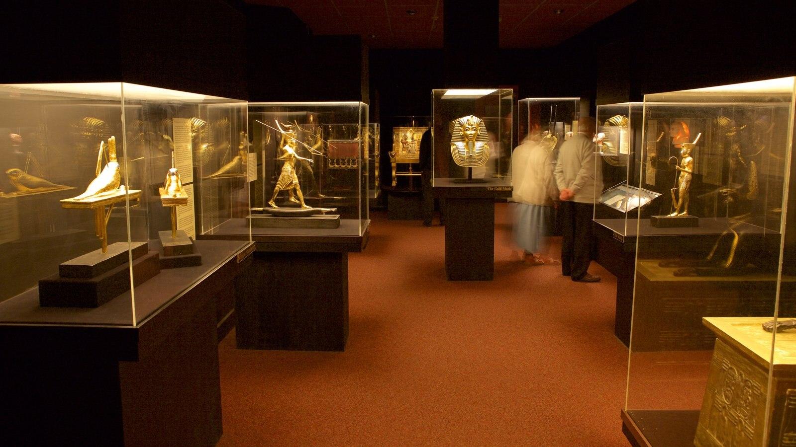Tutankamon a exposição caracterizando elementos de patrimônio e vistas internas