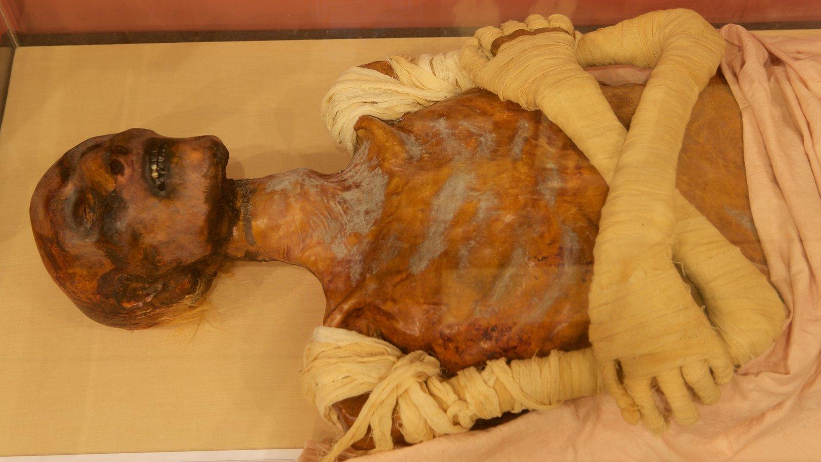 Tutankamon a exposição mostrando elementos de patrimônio
