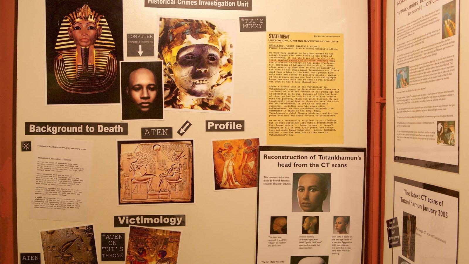 Tutankamon a exposição que inclui vistas internas