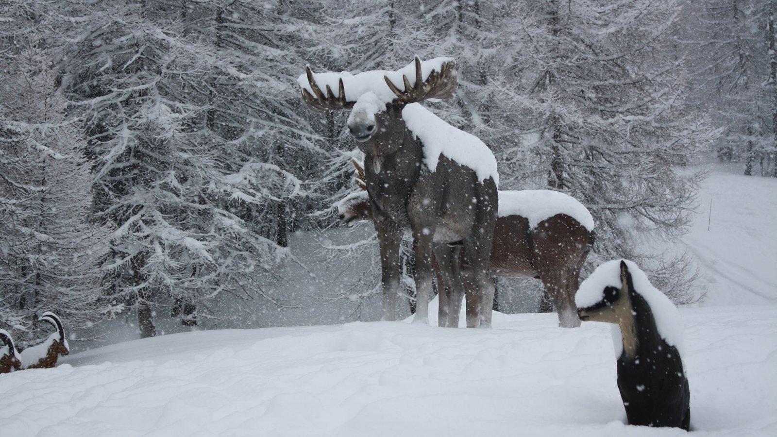 Bardonecchia Ski Resort featuring a statue or sculpture and snow