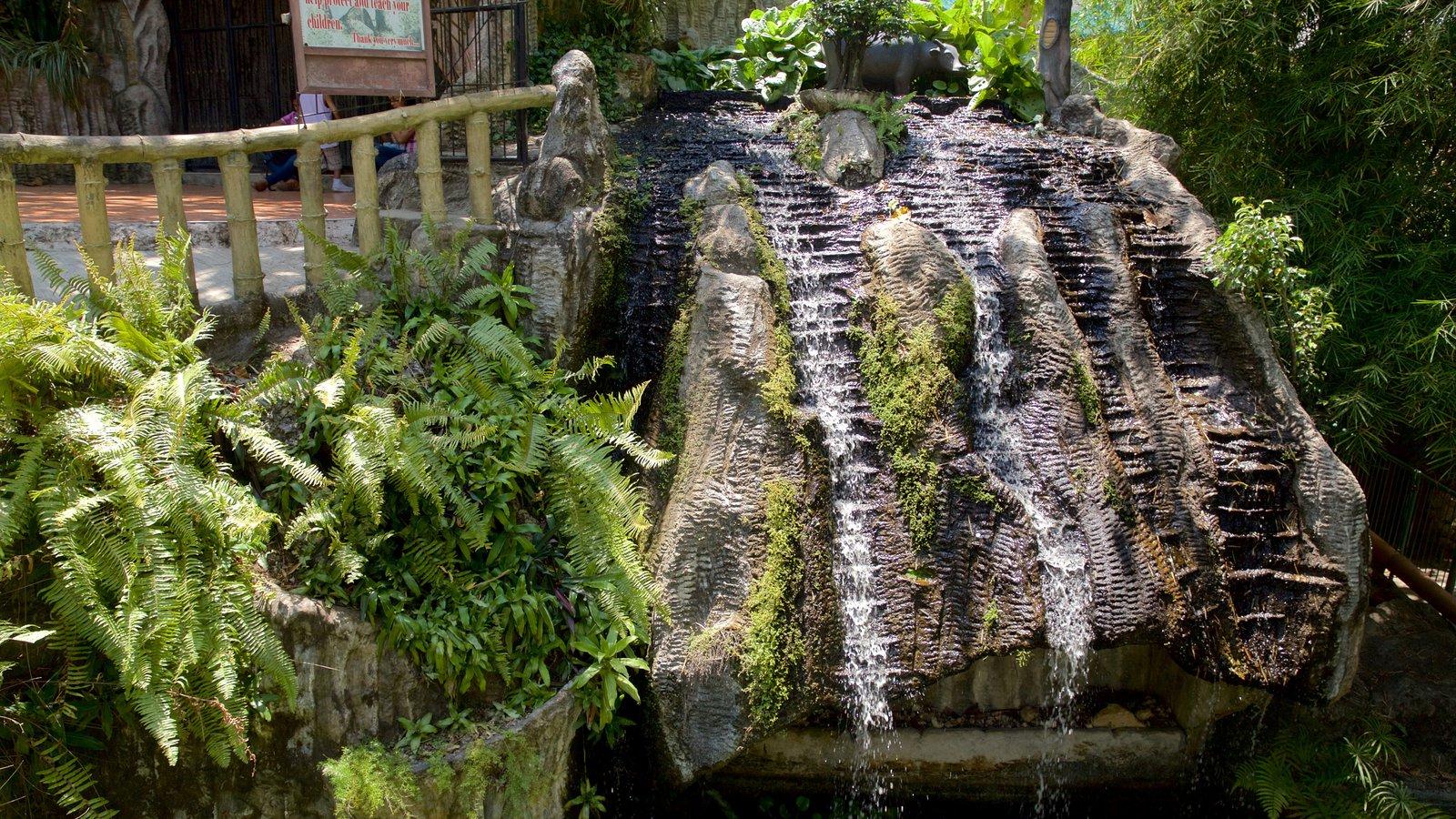 Simala Shrine showing a cascade and a garden