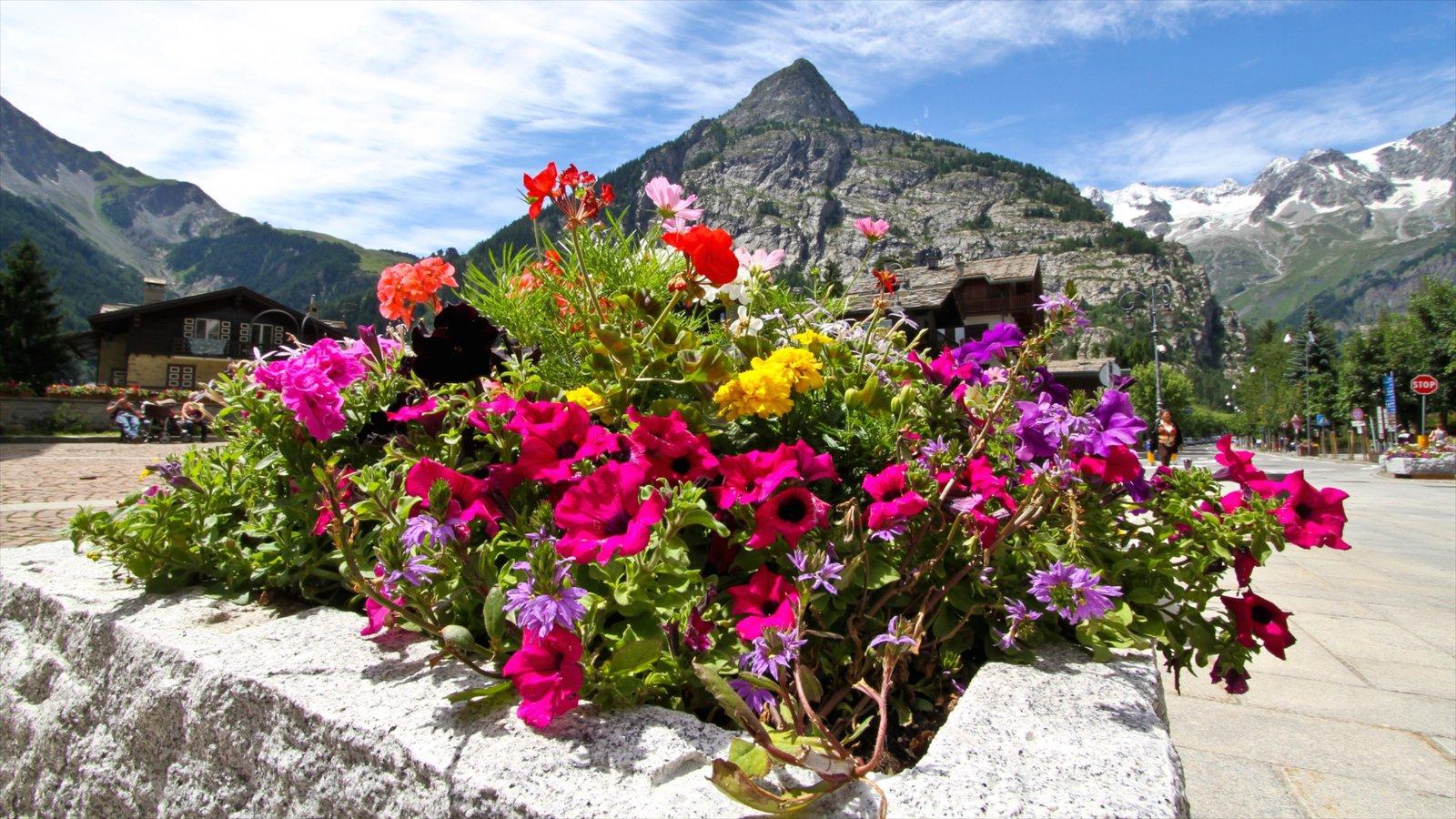 Courmayeur ofreciendo flores