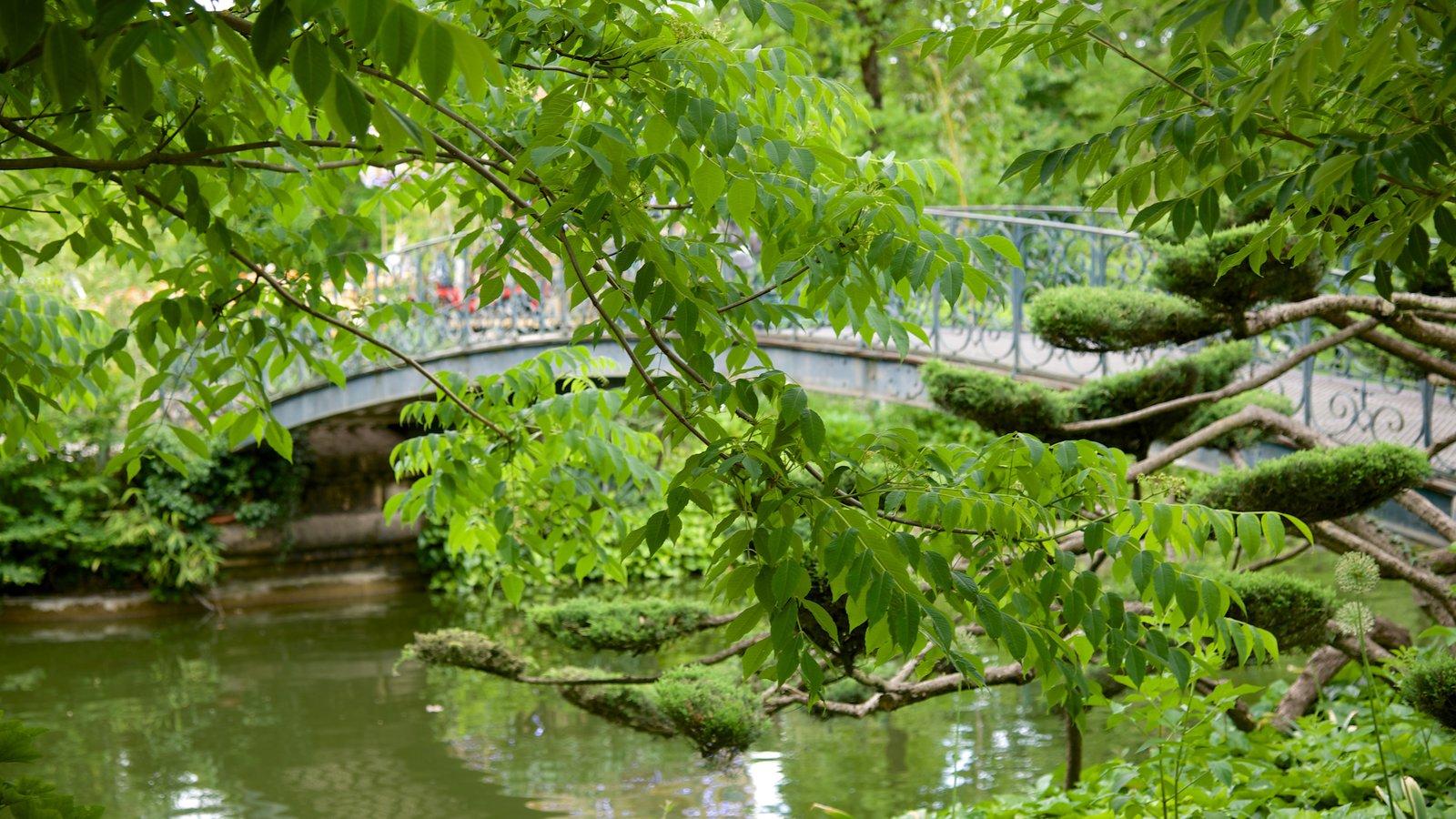 Bordeaux pictures view photos images of bordeaux for Jardin public bordeaux