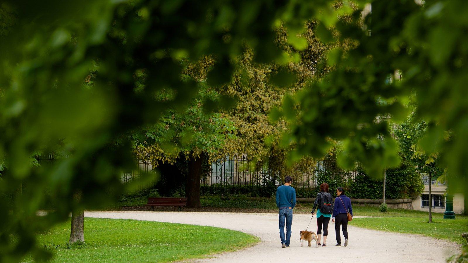 Gardens parks pictures view images of bordeaux for Jardin public bordeaux