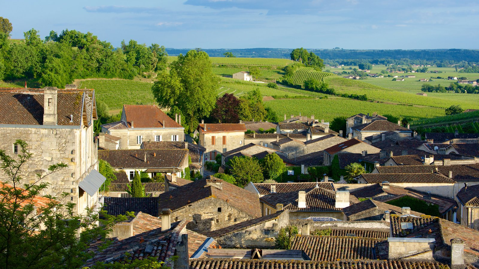bordeaux wine region Welcome to the official wine site of bordeaux official website bordeauxcom take a getaway to our region, traveling the wine routes and discovering our.