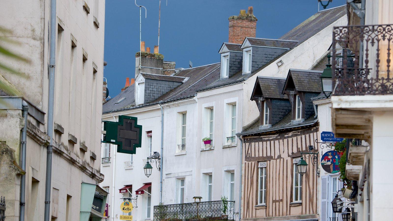 Amboise que inclui elementos de patrimônio e uma cidade pequena ou vila