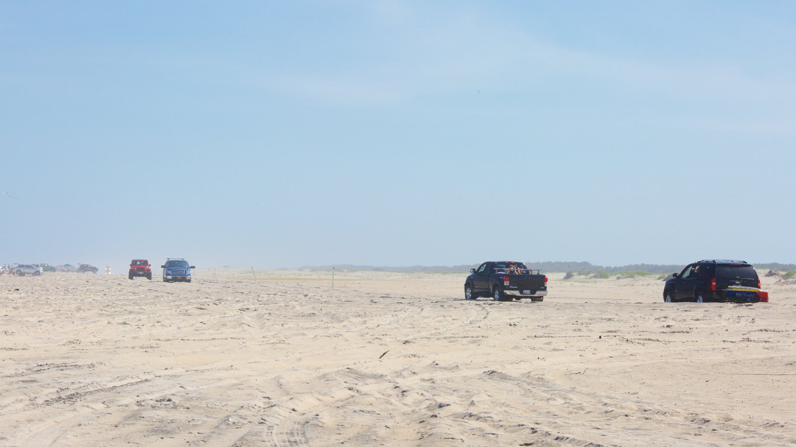 Assateague Island National Seashore showing a sandy beach and 4 wheel driving