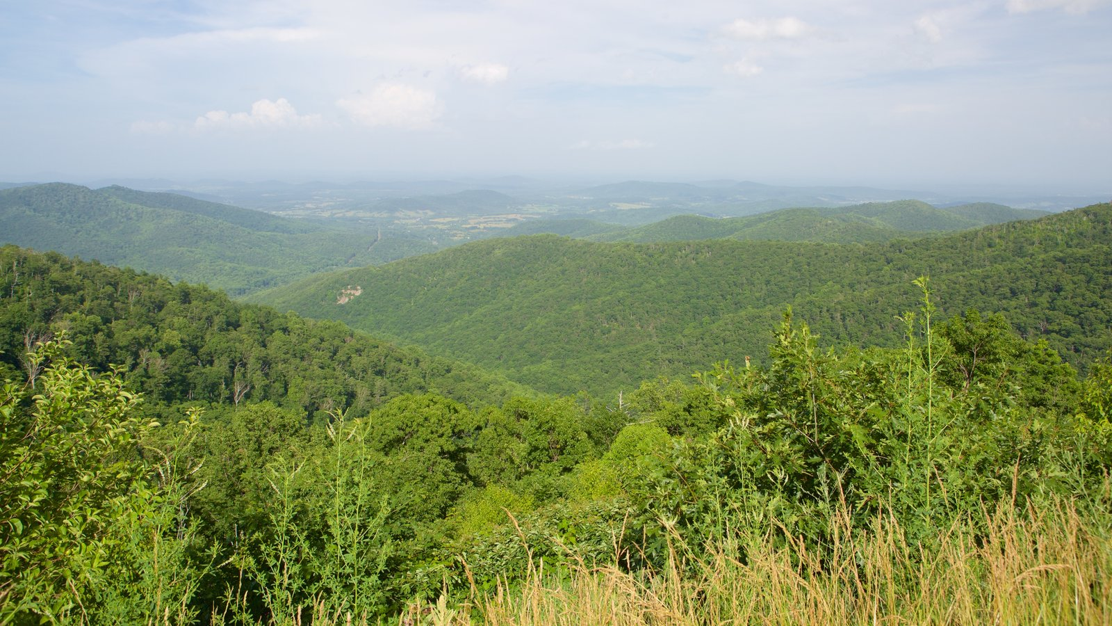 Shenandoah National Park featuring landscape views, tranquil scenes and mountains