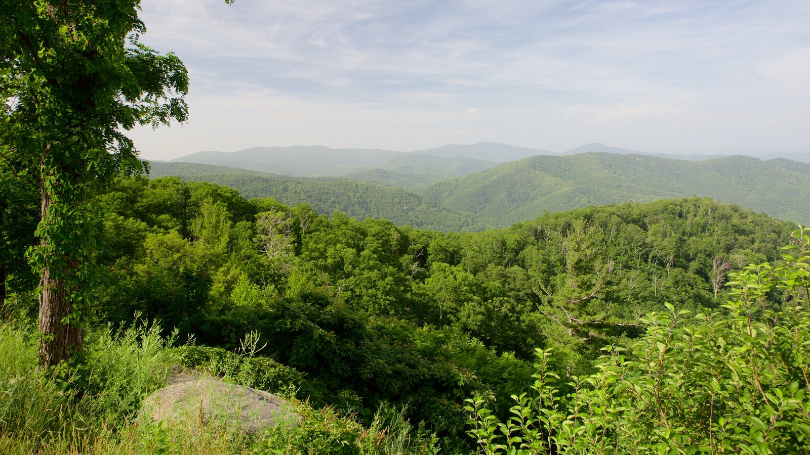Shenandoah National Park showing mountains, landscape views and tranquil scenes