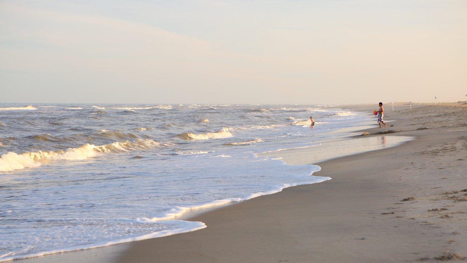 Chincoteague ofreciendo una playa y olas