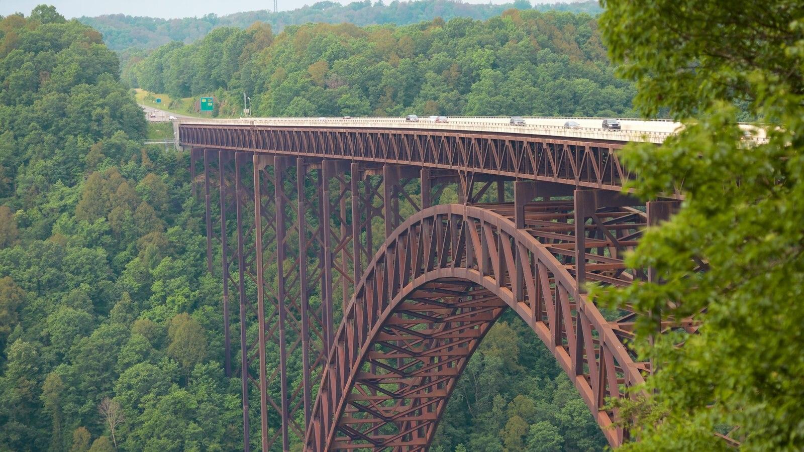 New River Gorge Bridge que incluye un puente, escenas tranquilas y un barranco o cañón