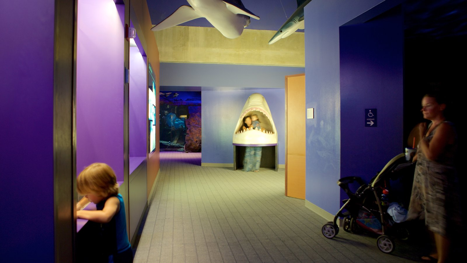 Virginia Aquarium And Marine Science Center Showing Interior Views As Well  As A Family