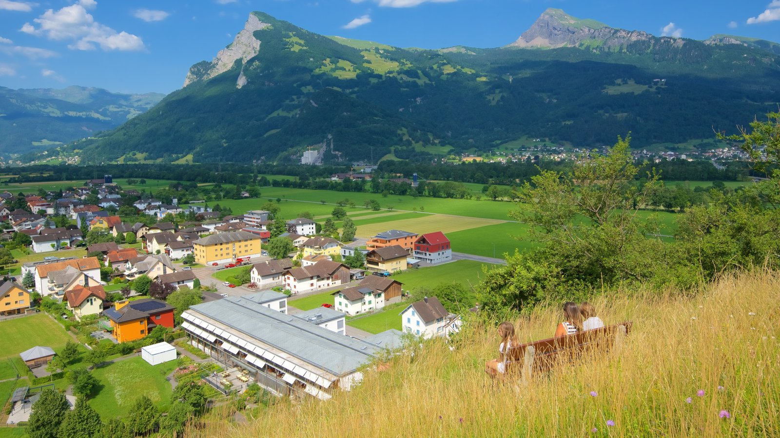 Liechtenstein featuring a small town or village, mountains and tranquil scenes