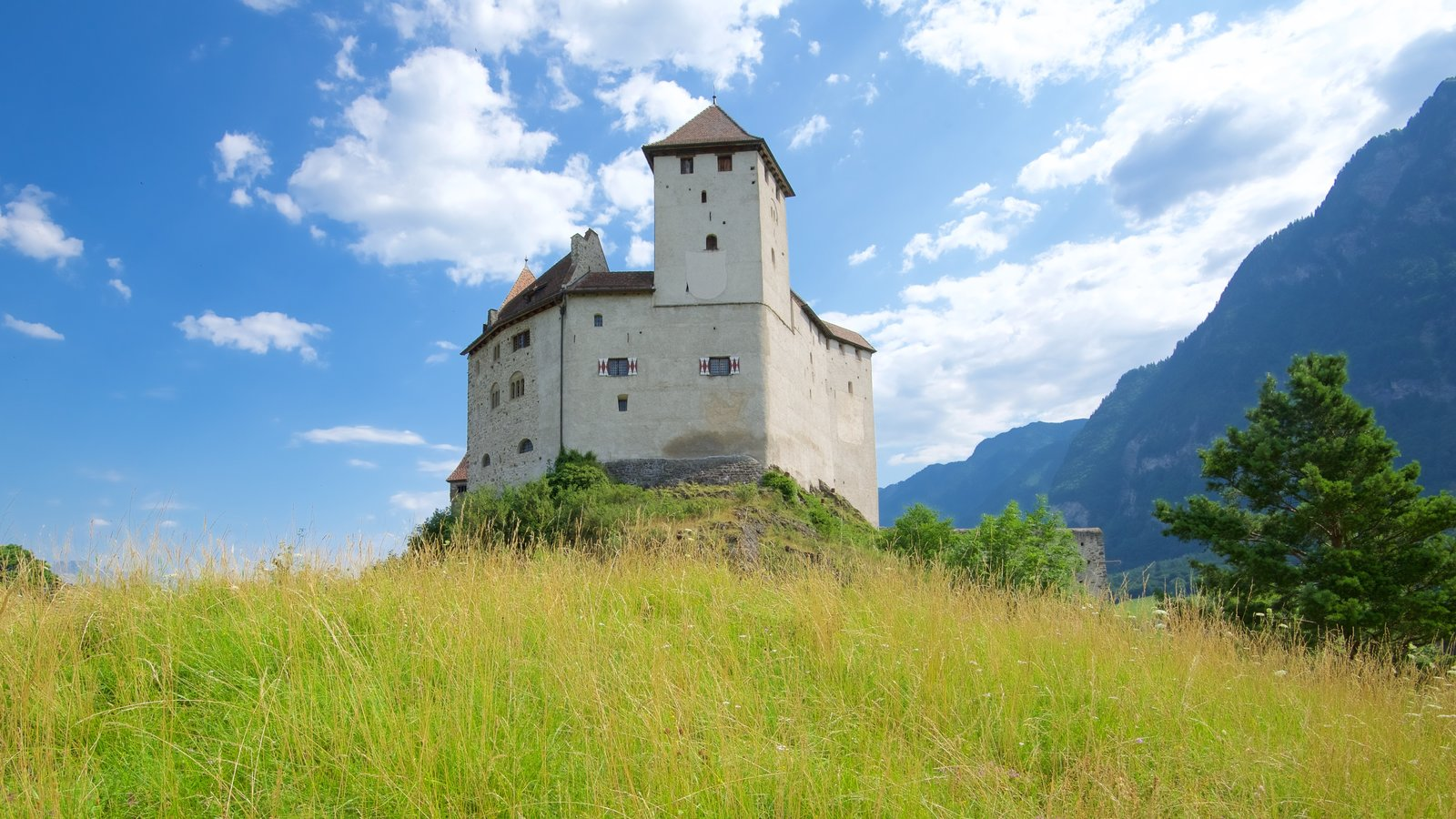 Liechtenstein which includes heritage elements, a castle and tranquil scenes