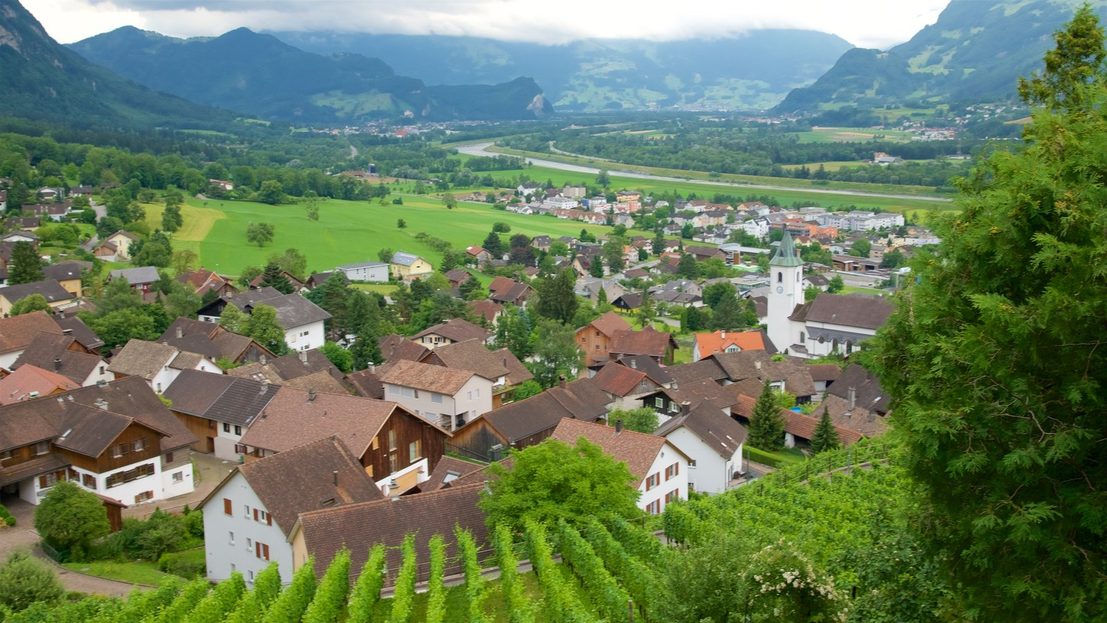 Liechtenstein showing farmland, tranquil scenes and a small town or village