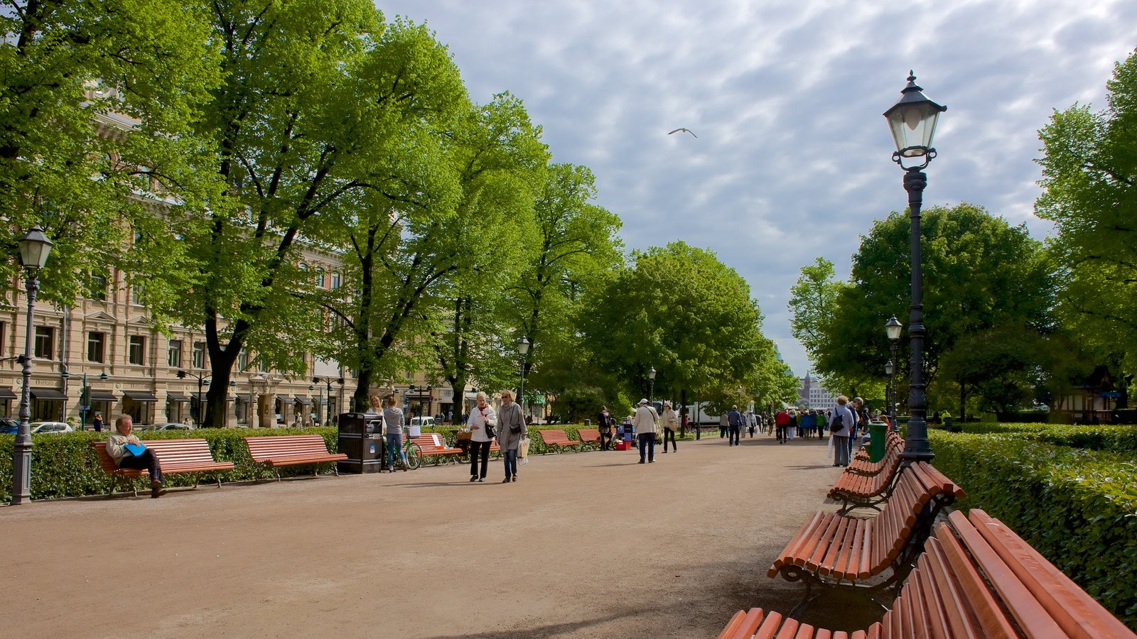 Esplanadi showing street scenes and a park