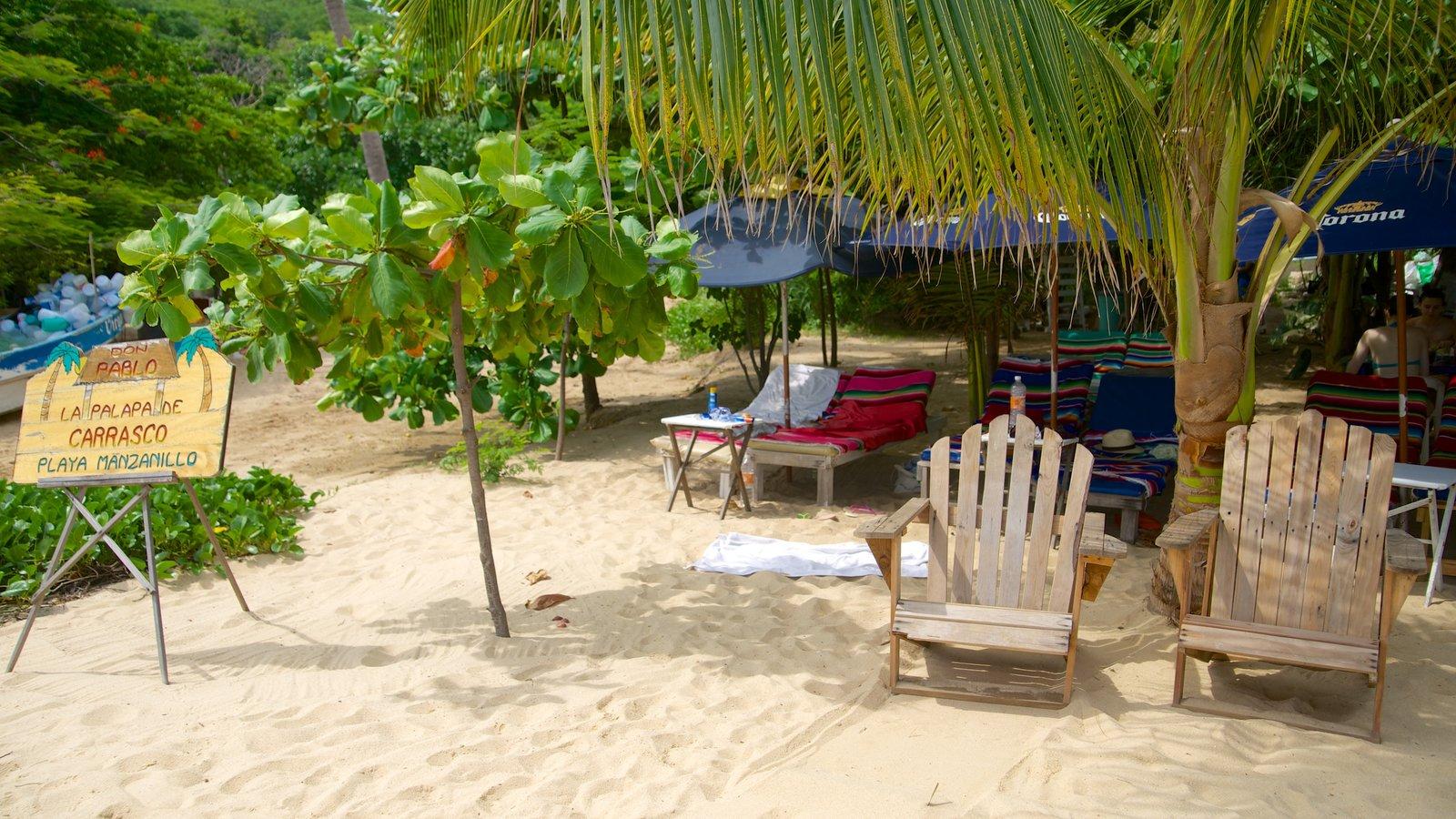 Puerto Escondido mostrando una playa de arena y escenas tropicales