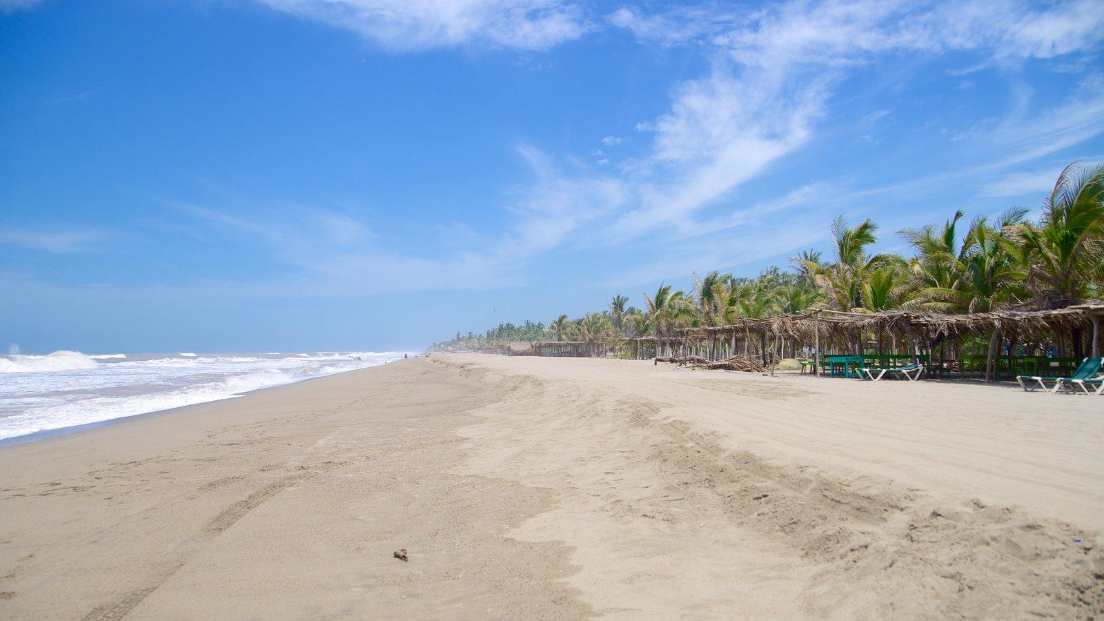 Playa De Barra Vieja Showing A Beach And Tropical Scenes