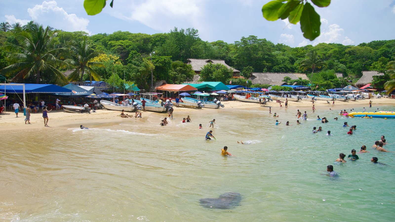 Playa Puerto Angelito ofreciendo natación, una playa y escenas tropicales