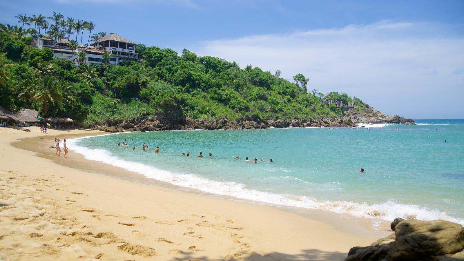 Playa de Carrizalillo mostrando una playa de arena, una casa y escenas tropicales