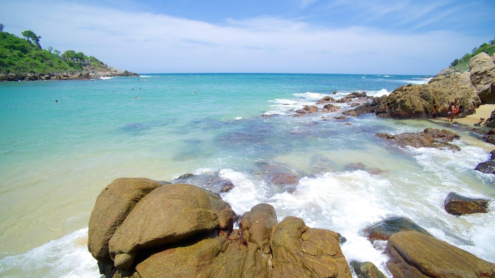 Playa de Carrizalillo ofreciendo vistas generales de la costa y costa rocosa