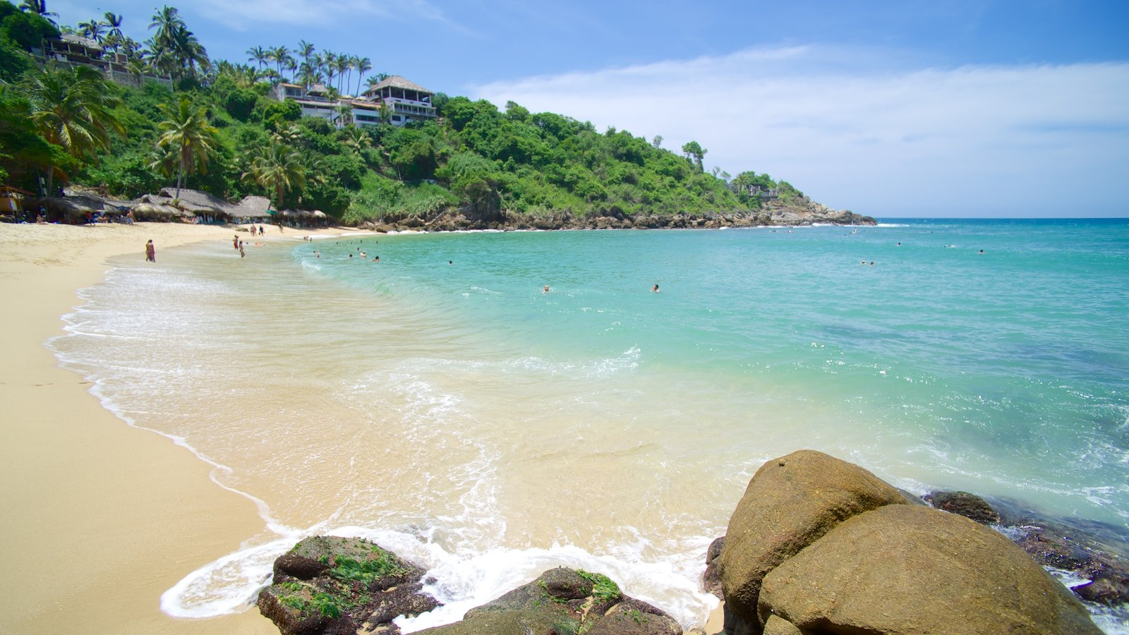 Carrizalillo Beach which includes tropical scenes, a beach and rocky coastline