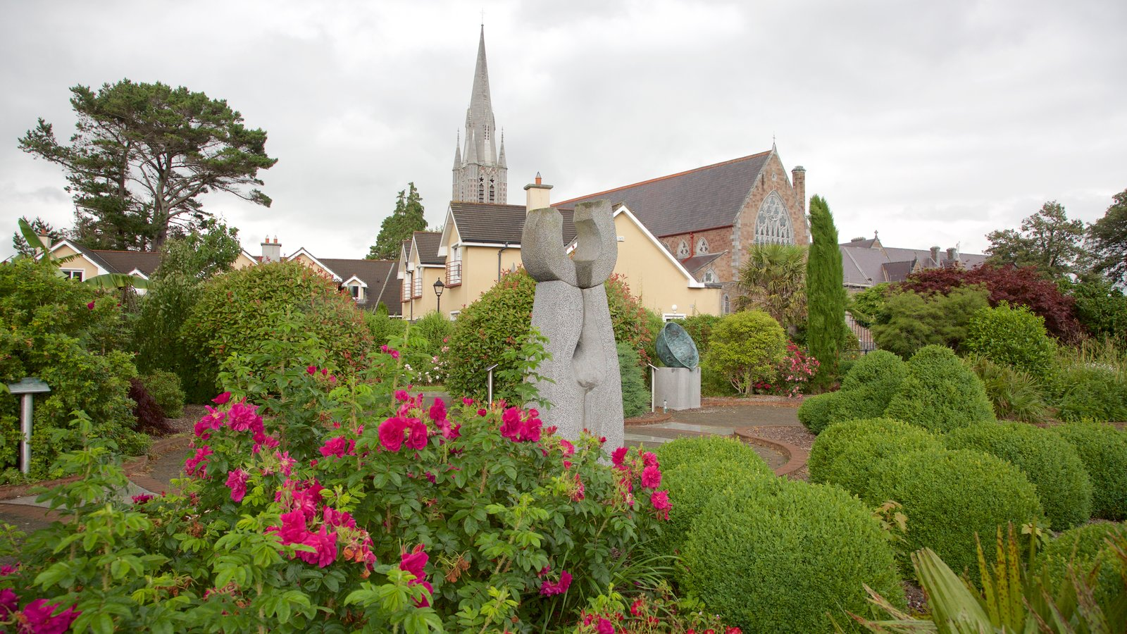 Flowers pictures view images of tralee for Park towne