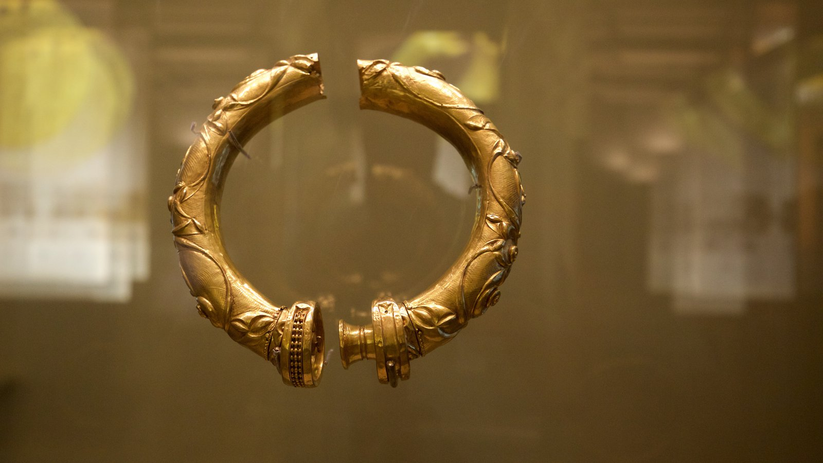 National Museum of Ireland - Archaeology and History which includes interior views and heritage elements