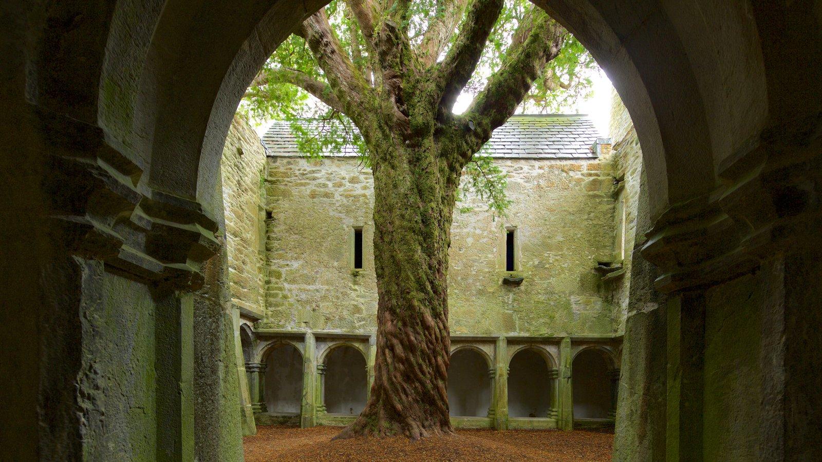 Muckross Abbey mostrando elementos del patrimonio, patrimonio de arquitectura y un castillo
