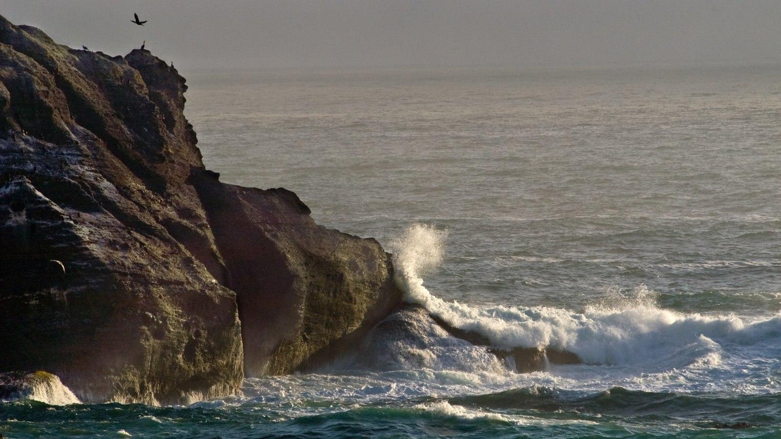 Washington que incluye costa rocosa y vistas generales de la costa