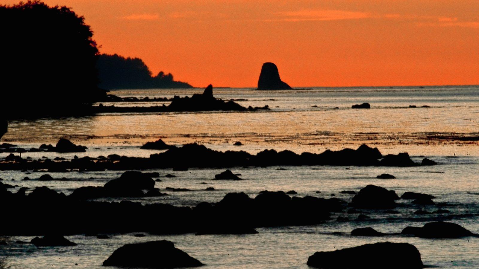 Washington ofreciendo una puesta de sol, costa escarpada y vistas generales de la costa