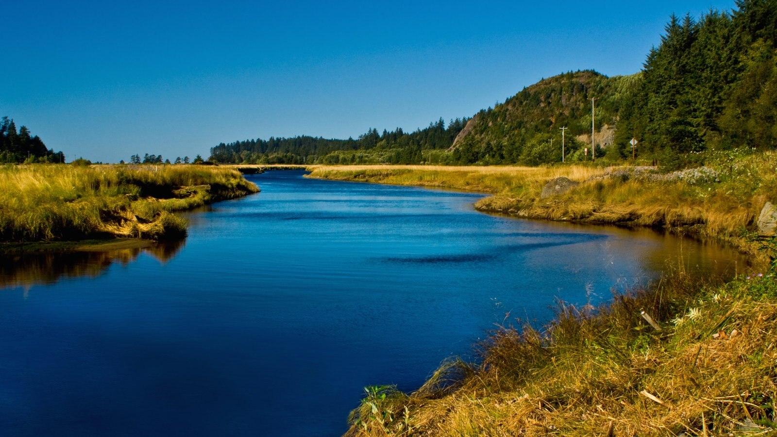 Washington que incluye un río o arroyo