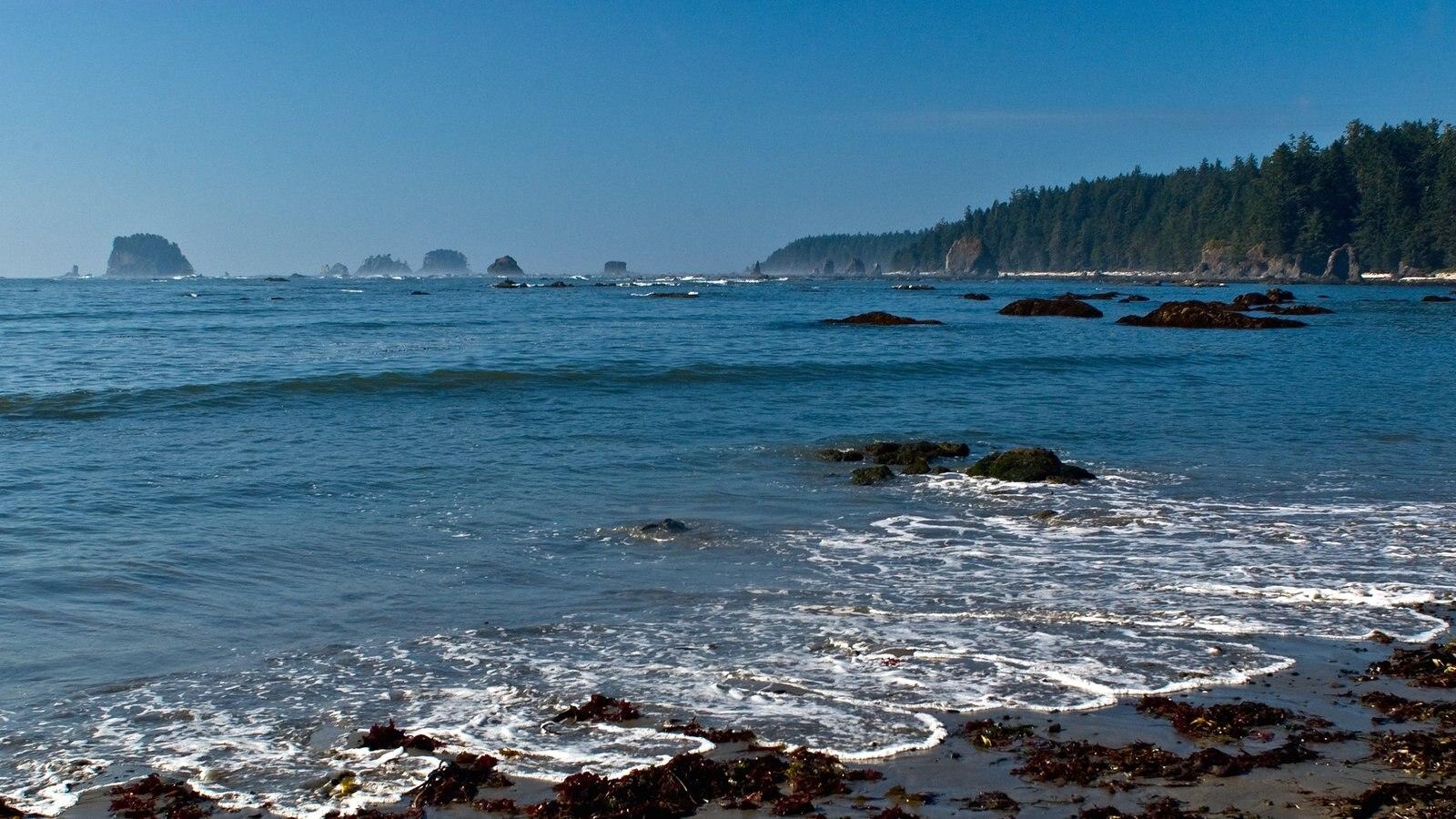Washington ofreciendo vistas generales de la costa