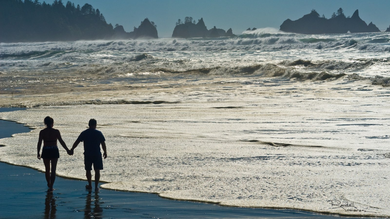 Washington mostrando una playa de arena y vistas generales de la costa y también una pareja