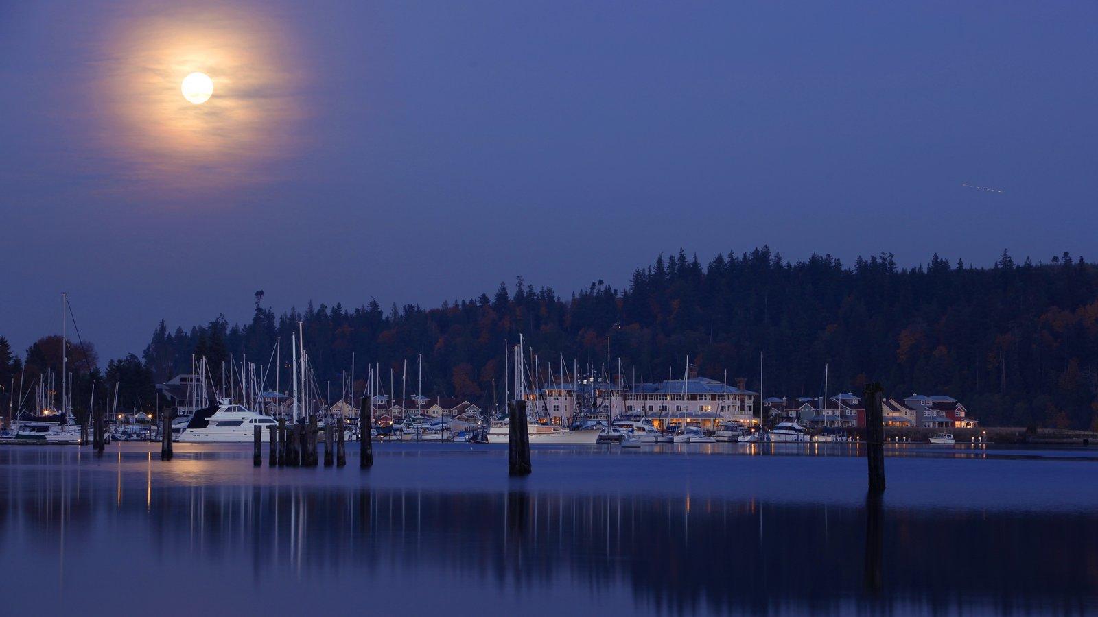 Washington que incluye una marina, escenas nocturnas y una bahía o puerto