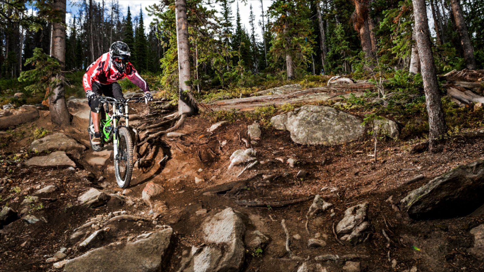 Winter Park Ski Resort mostrando mountain bike, cenas de floresta e cenas tranquilas