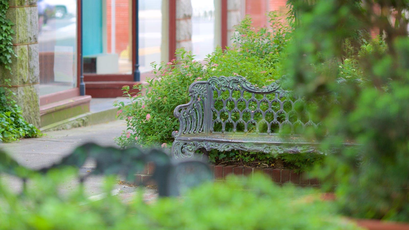 Salisbury featuring a park