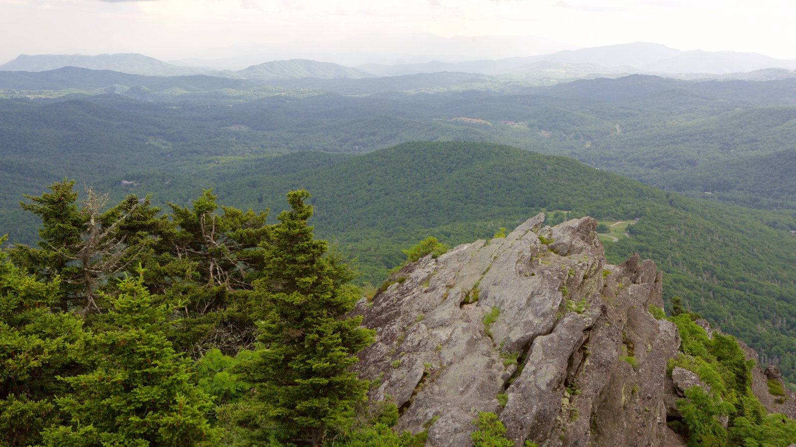 Grandfather Mountain which includes tranquil scenes, forest scenes and landscape views