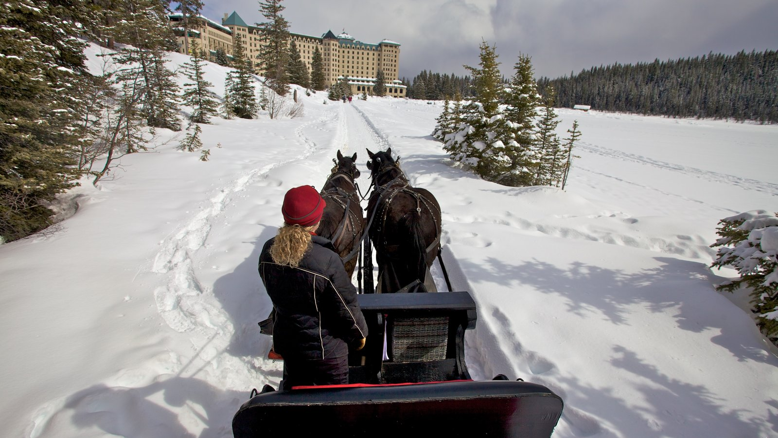 Lake Louise featuring horse riding and snow as well as an individual female