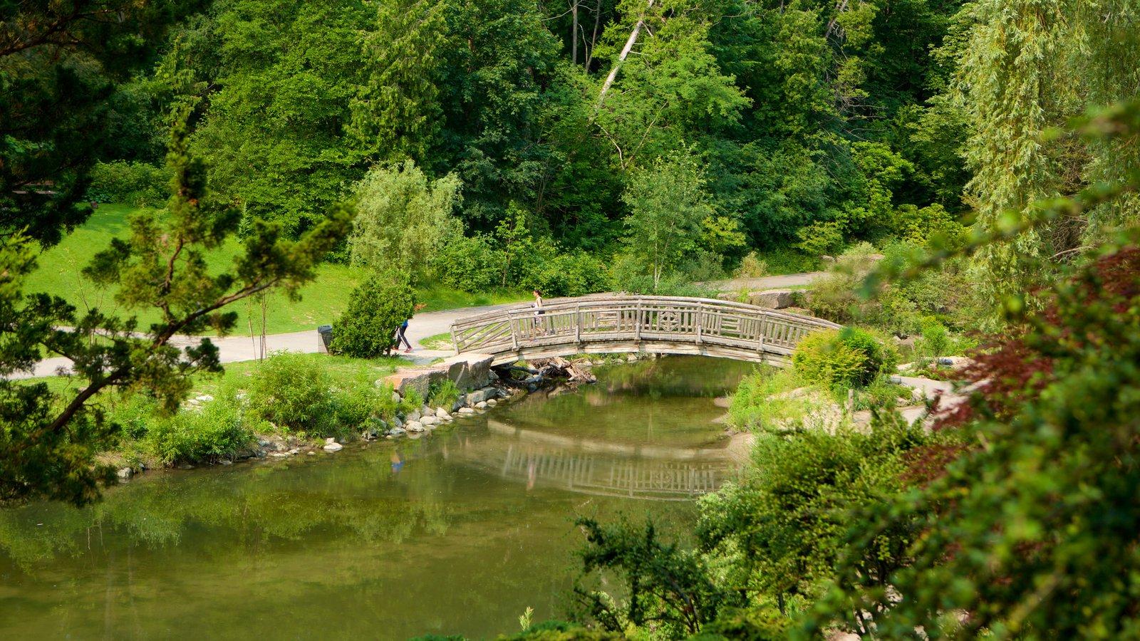 Don Mills ofreciendo un jardín, un río o arroyo y un puente