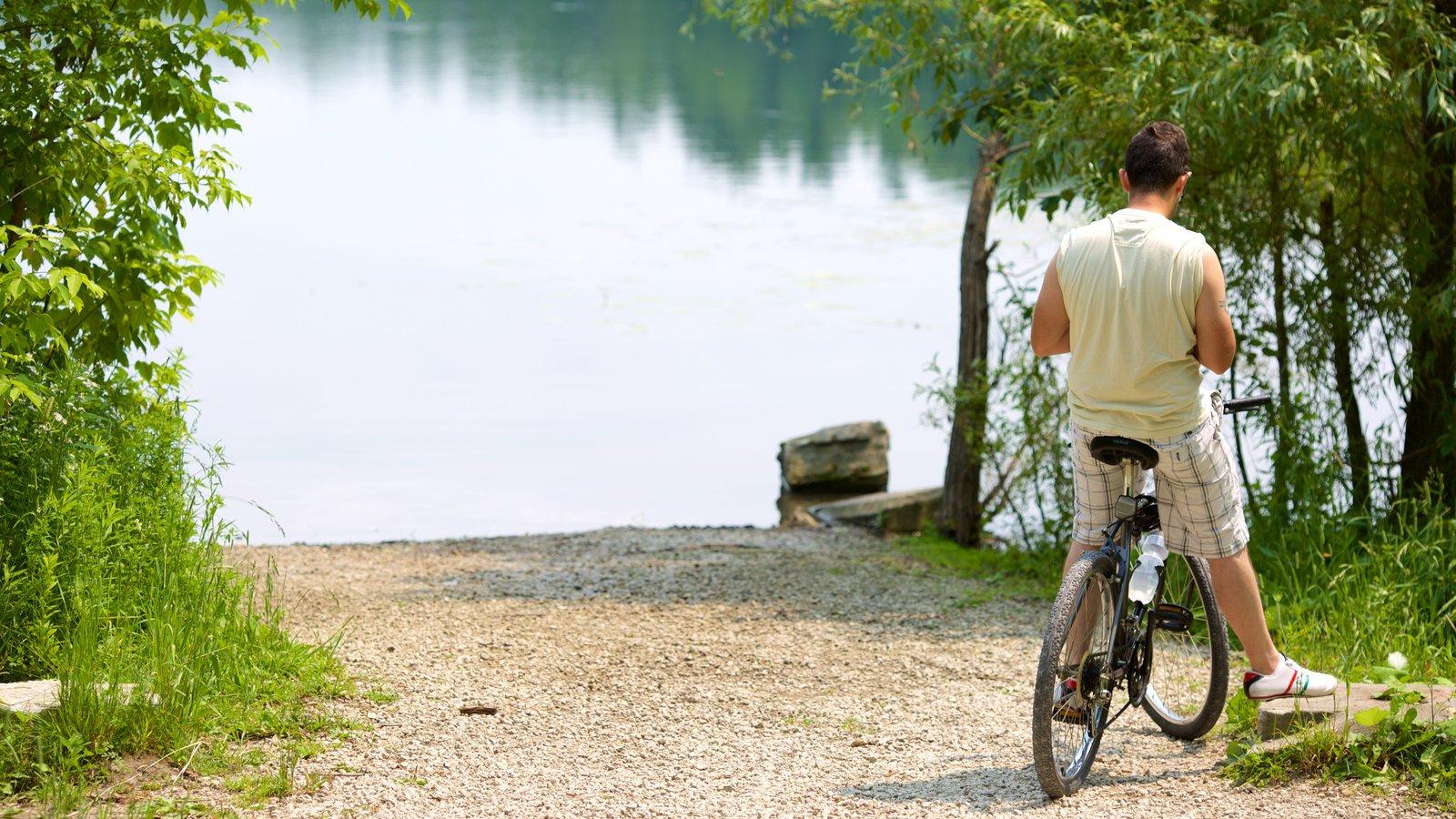 Richmond Hill mostrando ciclismo e um lago ou charco assim como um homem sozinho