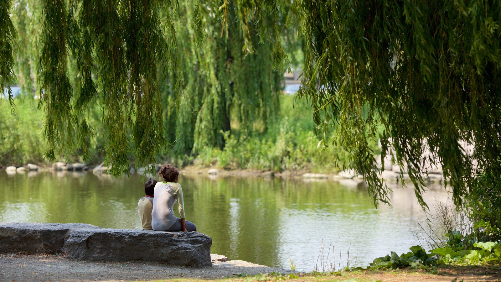 Brampton que inclui um lago e um parque assim como um casal