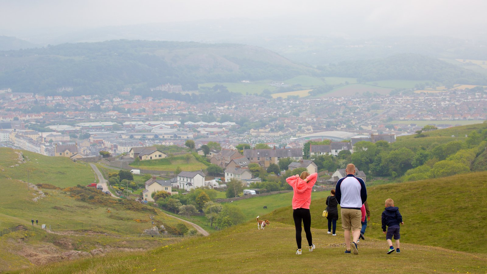 Great Orme which includes farmland and hiking or walking as well as a family