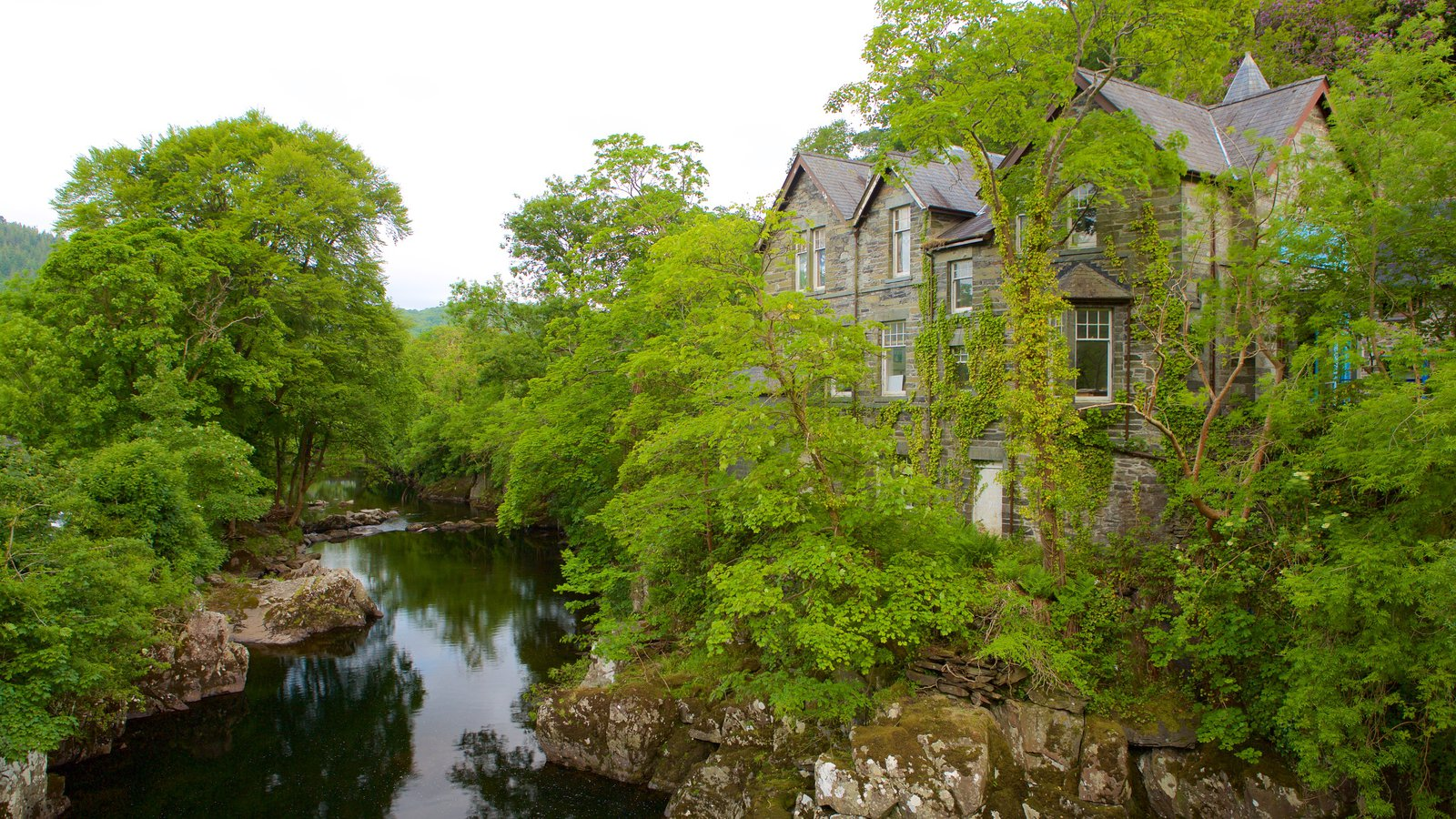 Betws-Y-Coed showing forests, a house and a river or creek