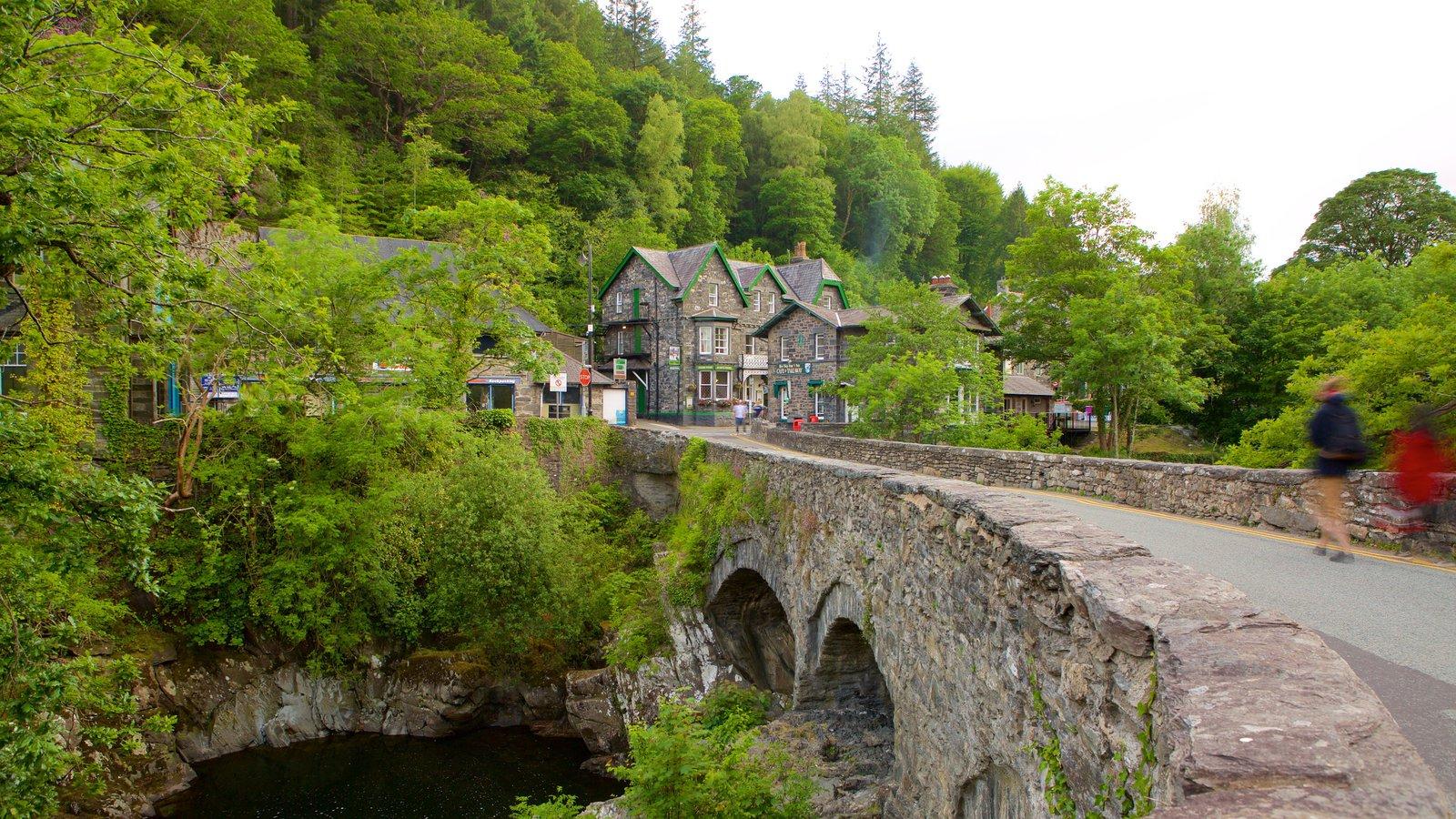 Betws-Y-Coed que incluye un puente y bosques
