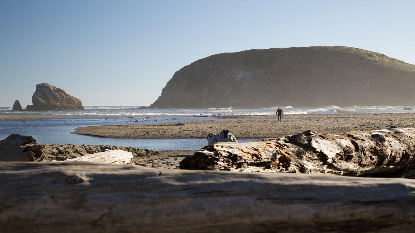 South Oregon Coast featuring general coastal views and a beach
