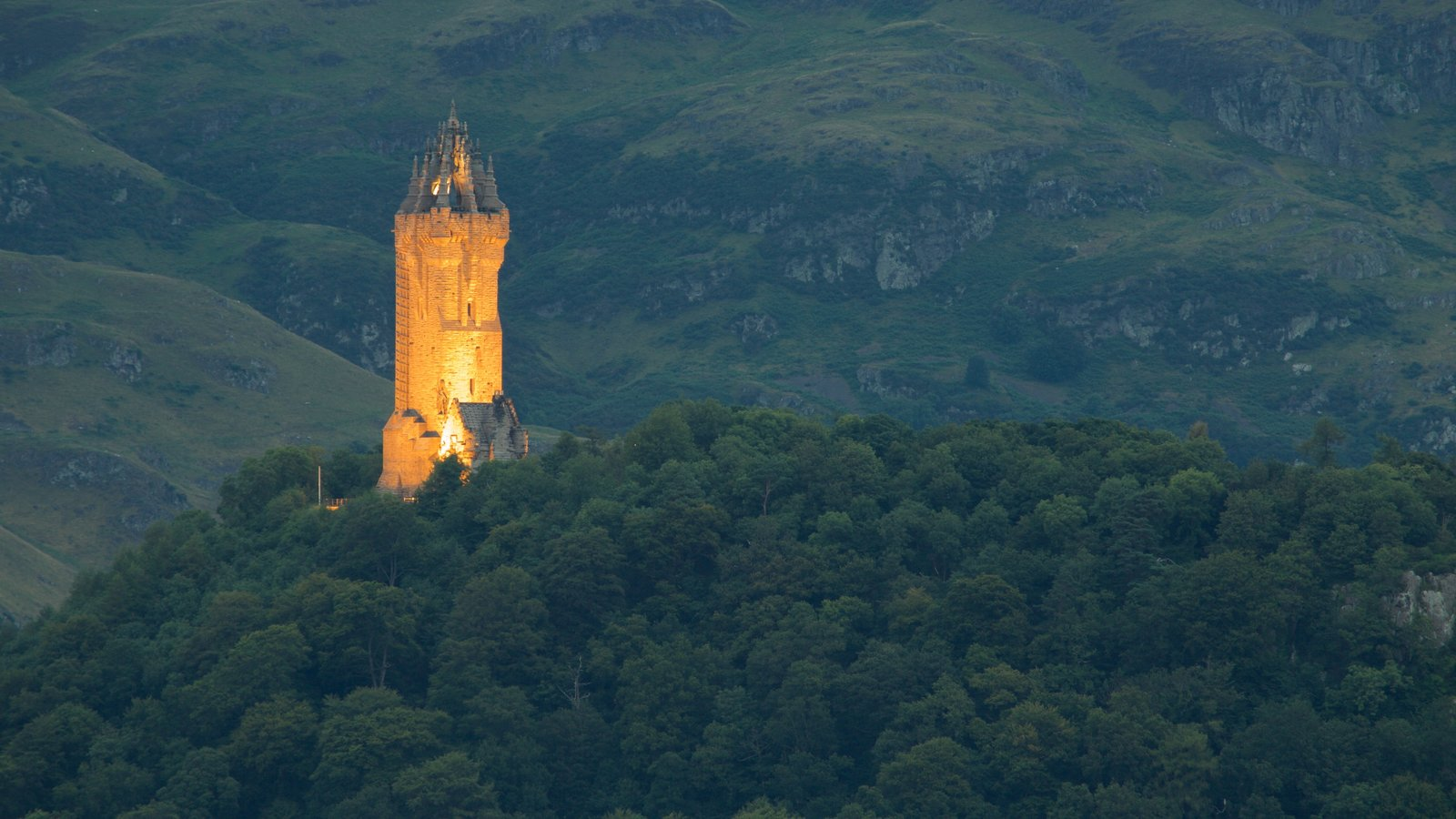 National Wallace Monument which includes night scenes, a monument and forests