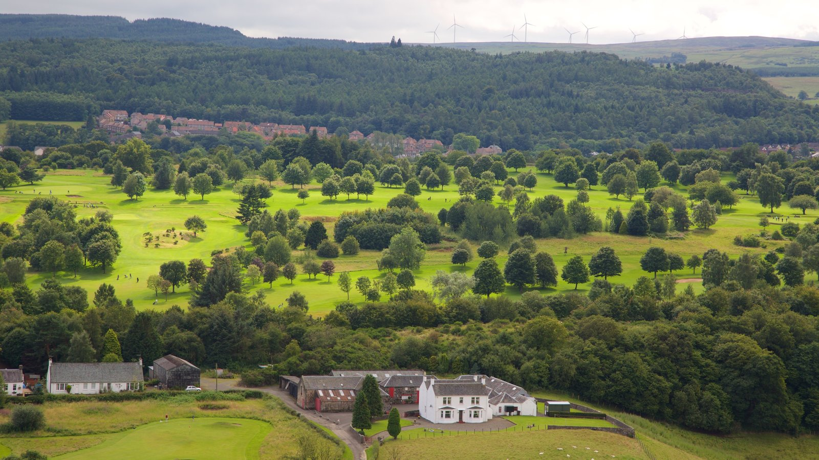 Stirling featuring forest scenes and farmland