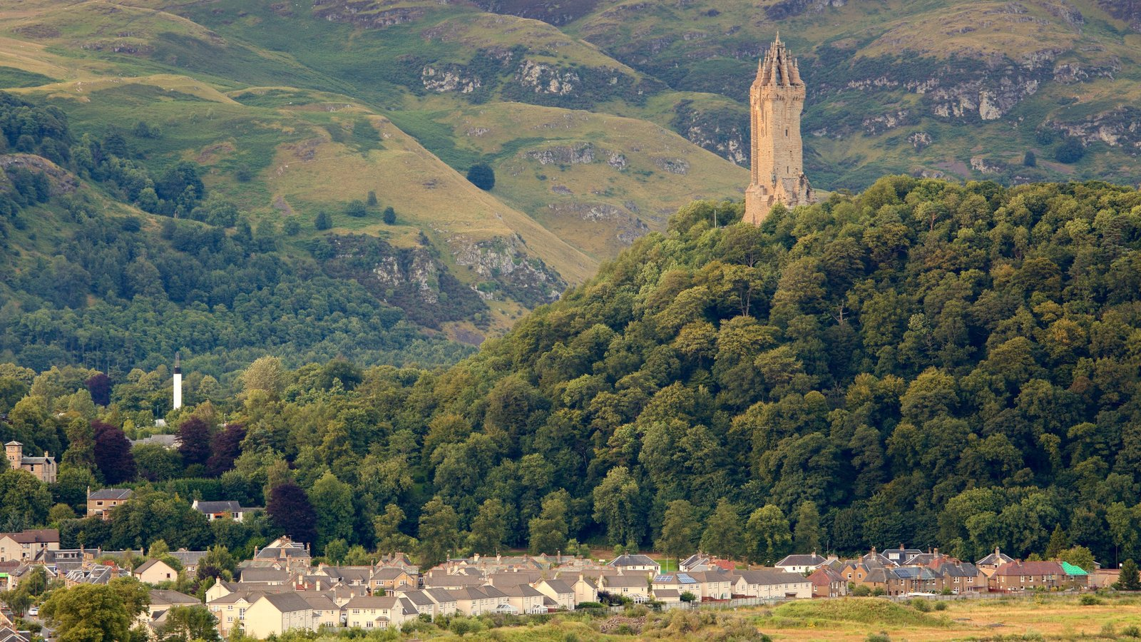 National Wallace Monument featuring a small town or village, a monument and forests