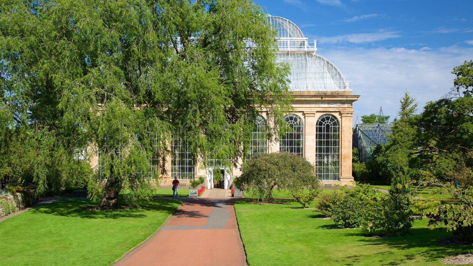 Real Jardín Botánico ofreciendo un parque